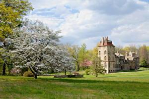 Фотографии Замки США Небо Цветущие деревья Облако Траве Пенсильвания Fonthill