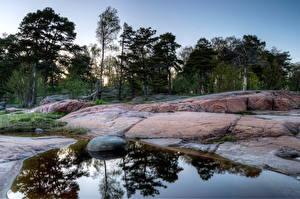 Обои Побережье Камень Финляндия Хельсинки Деревья Природа