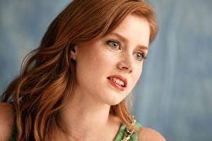 Картинки Amy Adams Глаза Смотрит Лицо Рыжая Волосы