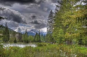 Фото Парк Небо Горы Канада Дерево Облачно HDR Банф Природа
