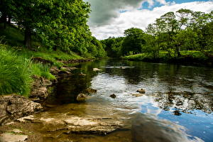 Фотография Речка Англия Bolton Wharfe Природа