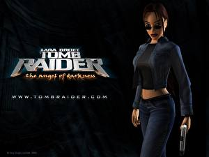 Фото Tomb Raider Tomb Raider The Angel of Darkness Игры