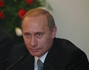 Фотографии Владимир Путин Мужчины Взгляд Лицо Президент Знаменитости Девушки