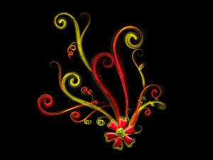 Картинки Растения Узоры Черный фон 3D Графика
