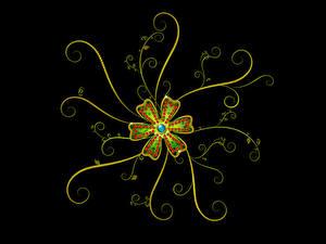 Фото Растения Узоры Черный фон 3D Графика