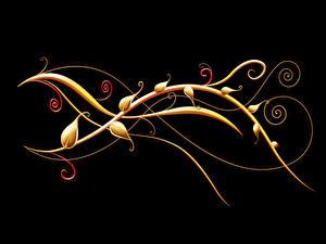 Картинка Растения Узоры Черный фон 3D Графика